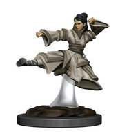 MINIS: ICONS OF THE REALMS: HUMAN FEMALE MONK