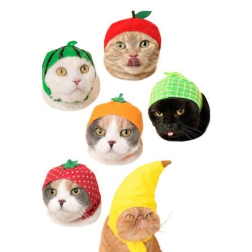 Clever Idiots BLIND BOX CAT CAP FRUIT