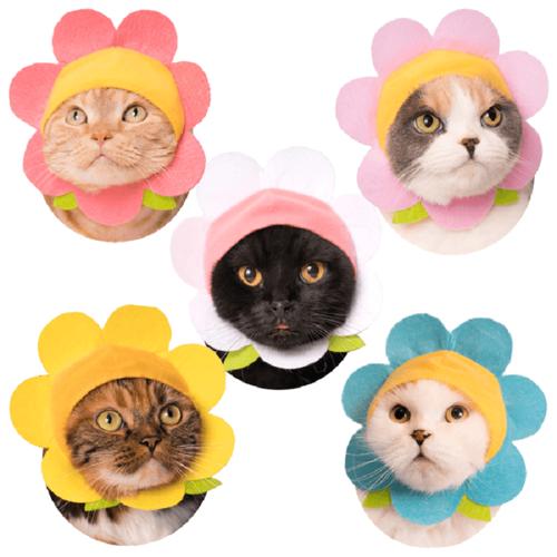 Clever Idiots BLIND BOX CAT CAP FLOWER