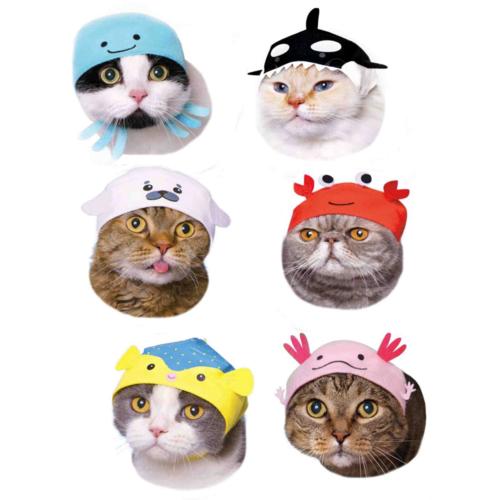 Clever Idiots BLIND BOX CAT CAP AQUARIUM VOLUME 2