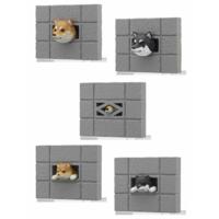 BLIND BOX DOG SHIBA INU WALL FRIDGE MAGNET