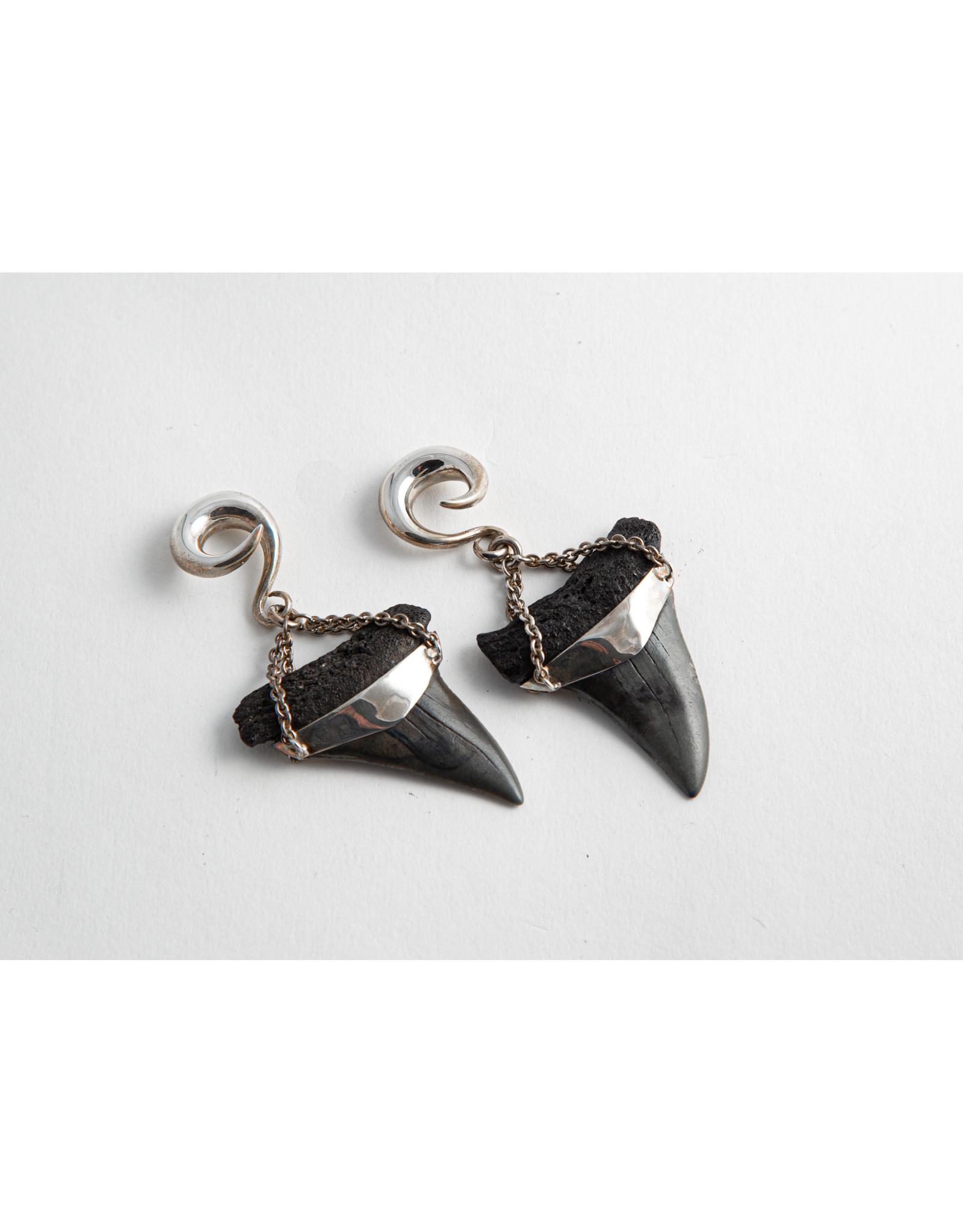 Diablo Organics Diablo Organics silver-set fossil Mako shark teeth on large classic coil