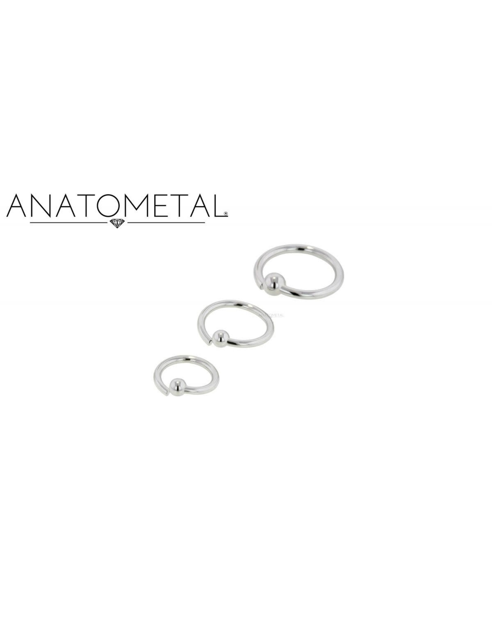 Anatometal Anatometal 20g steel fixed bead ring