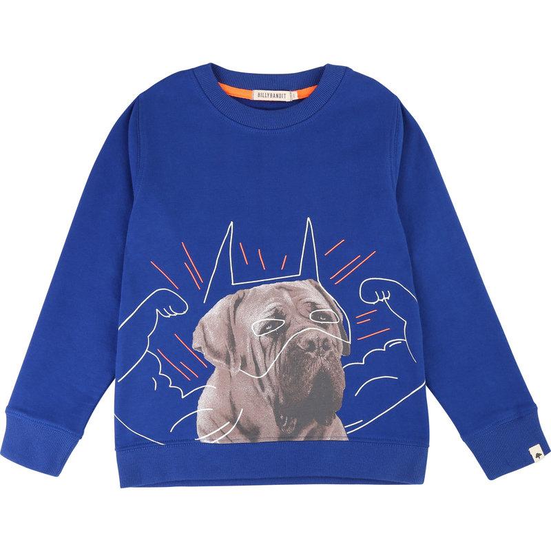 Chandail chien - Bleu roi