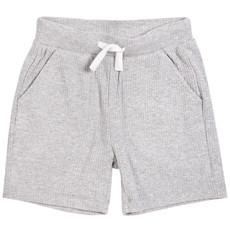 Petit Lem Short tricot - gris -