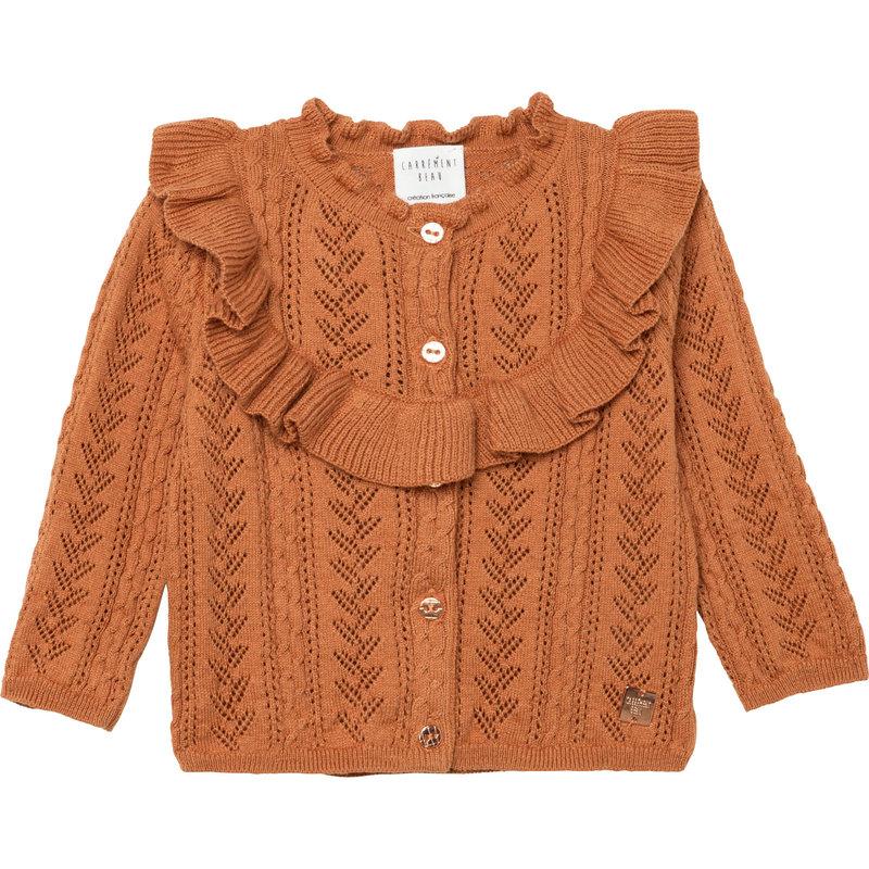 Carrément Beau Cardigan tricot - dark chocolate -