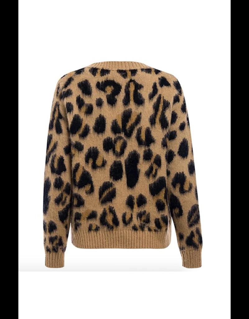 flight lux regenbogen leopard print sweater