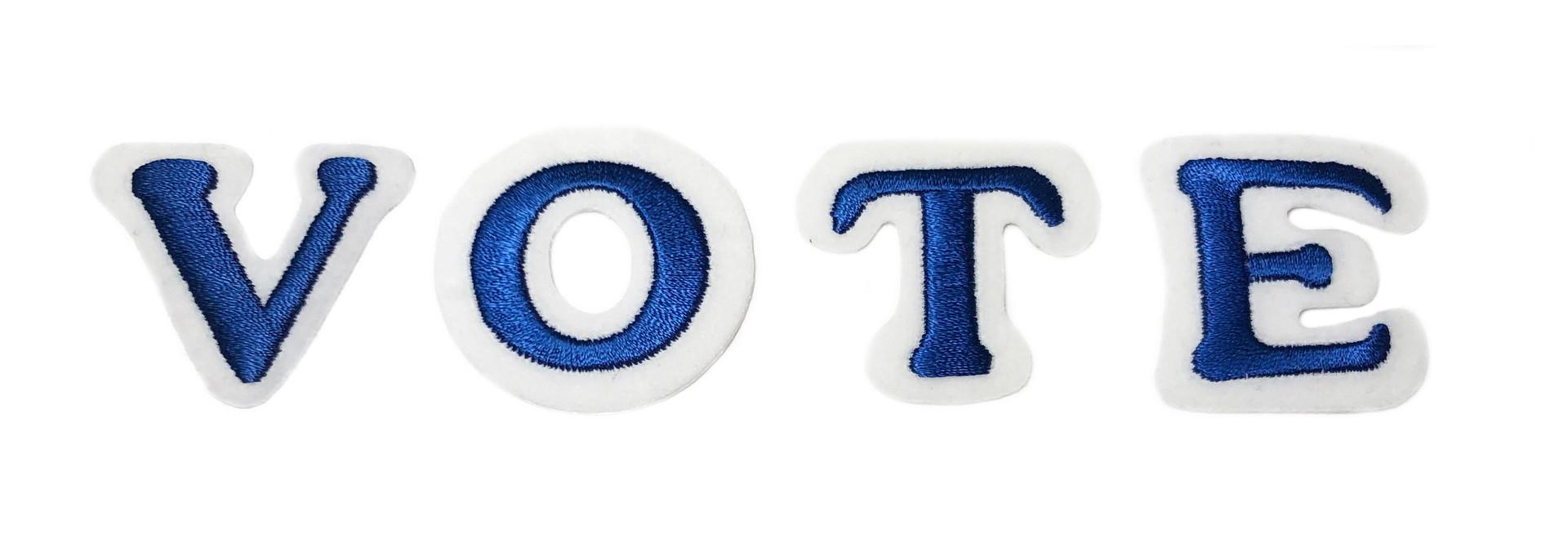 THE SHOP  VOTE CAMPAIGN BLUE