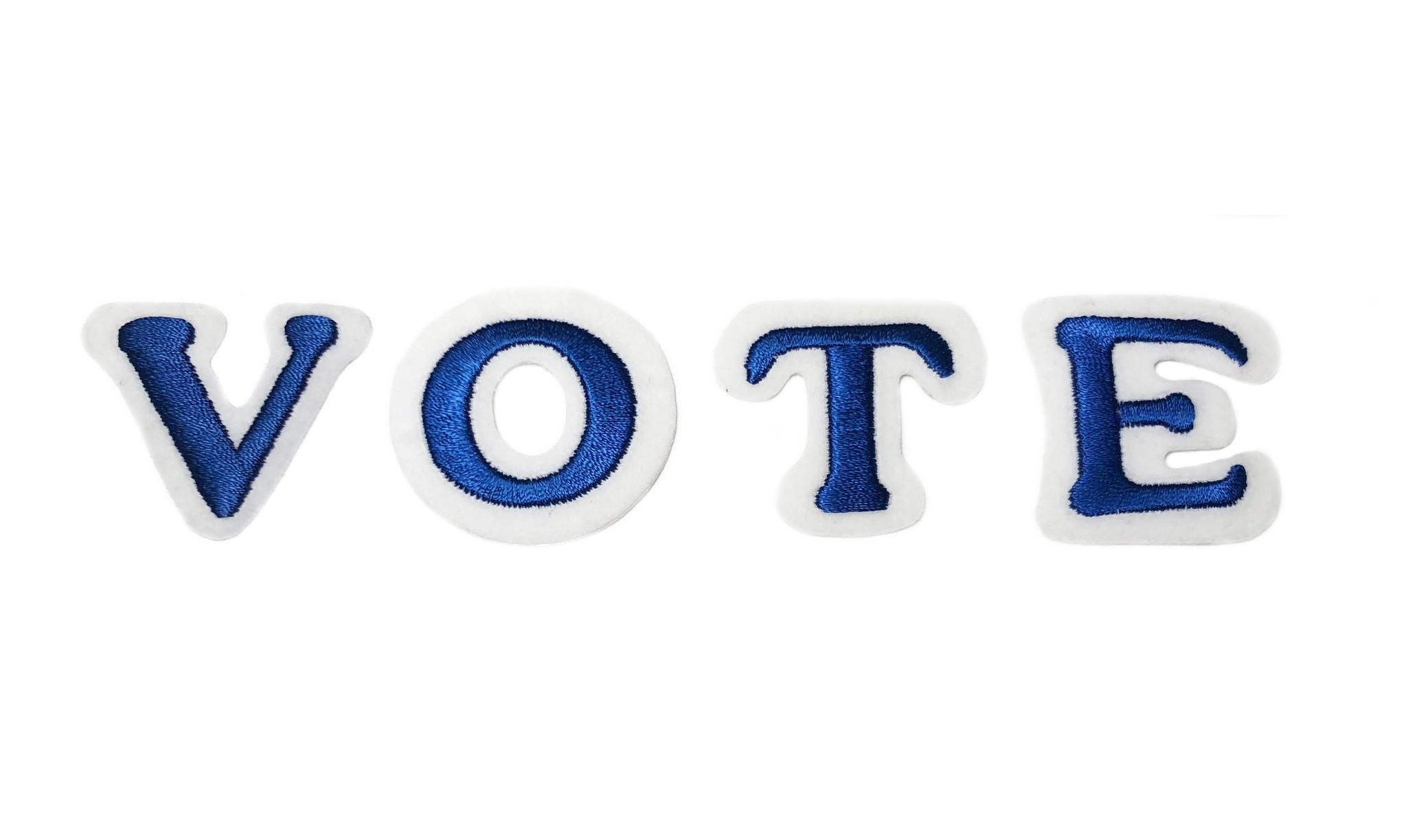 THE SHOP  VOTE CAMPAIGN BLUE-1