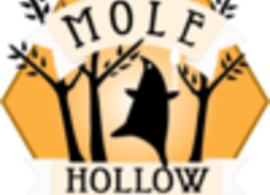 Mole Hollow Candles