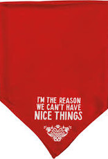 Pet Bandana - The Reason, Large