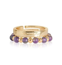 Katie Loxton SIGNATURE STONES - FAMILY  RINGS - gold/amethyst stones