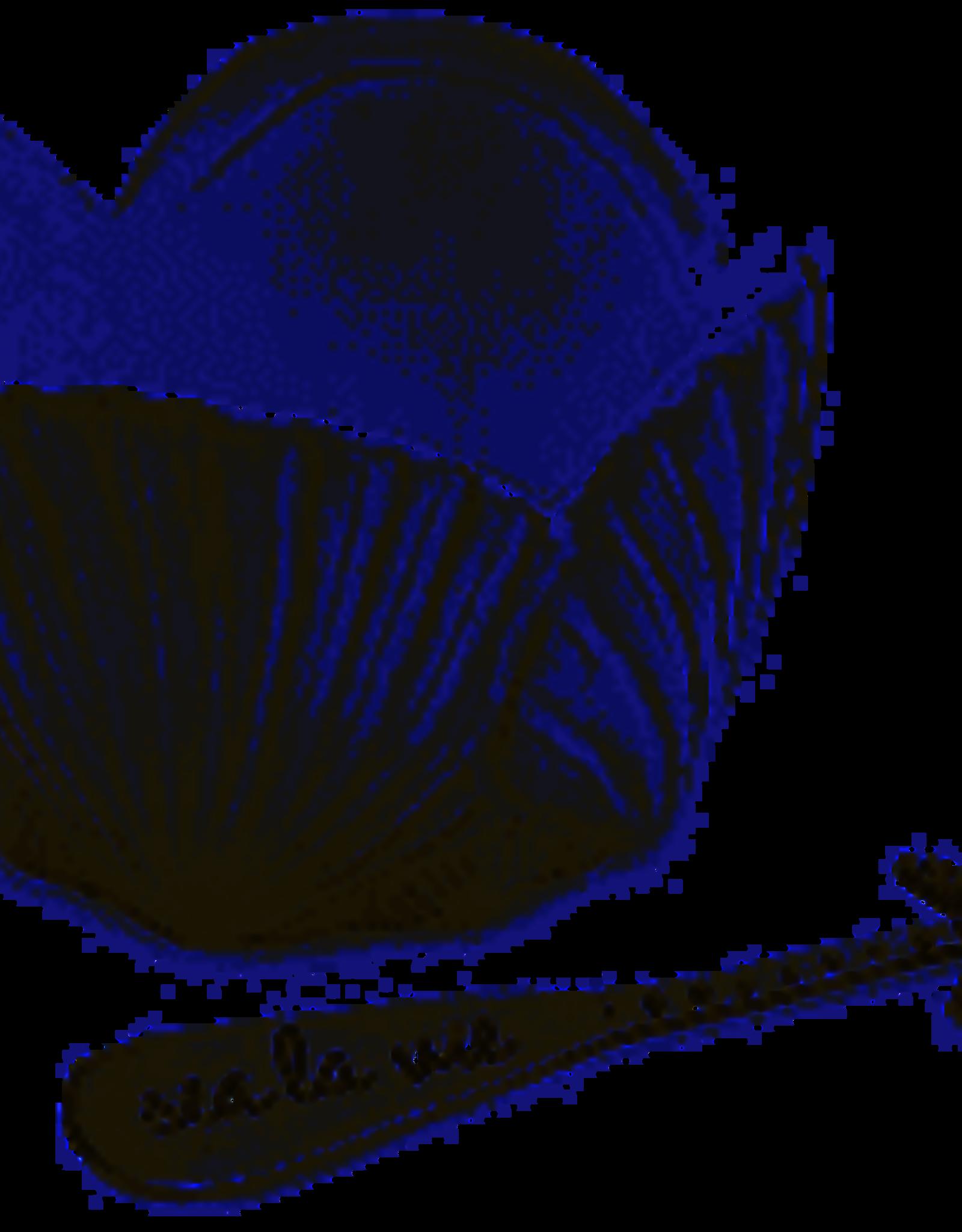 Fan Shell Dip Bowl