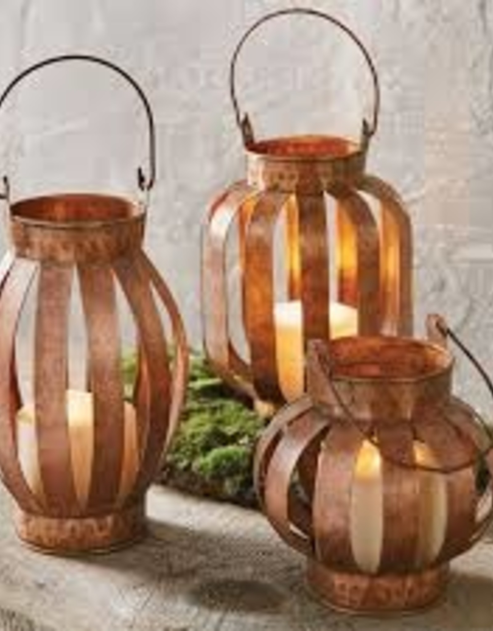 Copper Lantern, Short