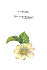 Anne Taintor Birthday Card - Bad Example