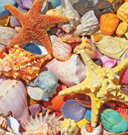 White Mountain Puzzles Puzzle, Beach Shells