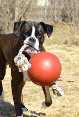 Jolly Pets Romp N Roll Ball with Rope