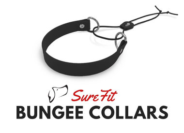 Bungee Collars