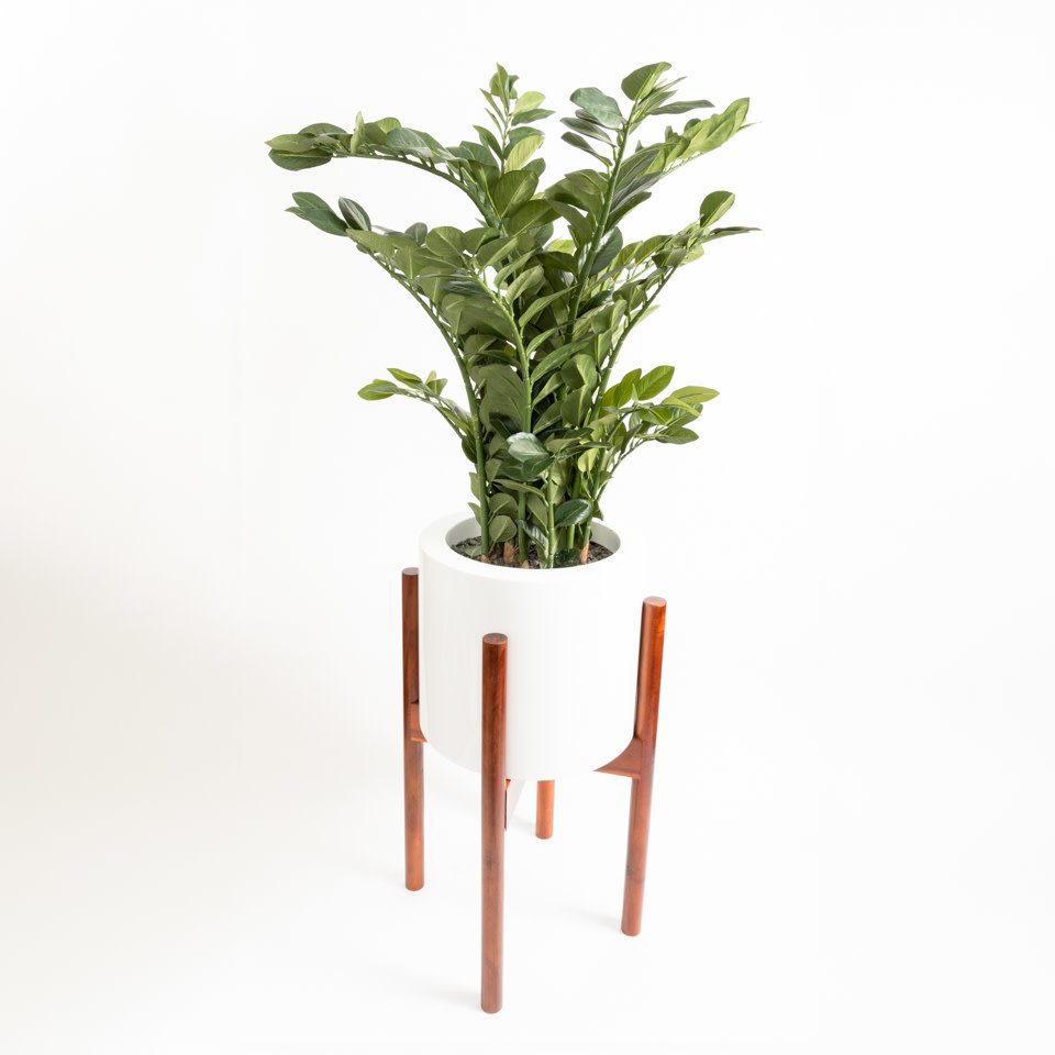 Le Present Tall Footed Fiberglass Pot with Plant