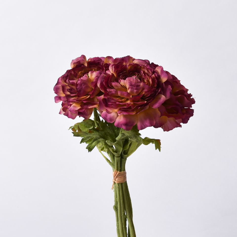 Ranunculus Bundle