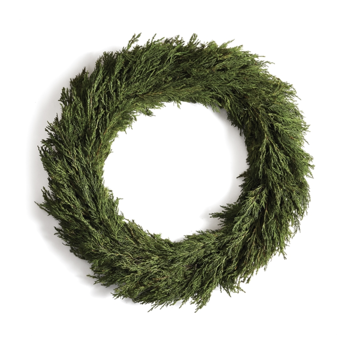 """Cypress Wreath 24"""""""