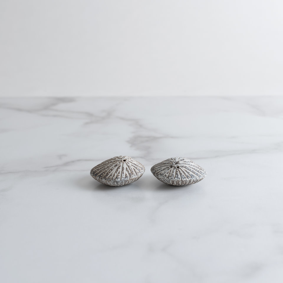 Sea Shell Salt and Pepper Shaker- Brown