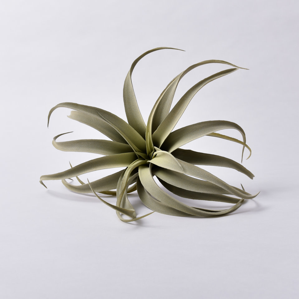 Light Green Tillandsia Pick- Large