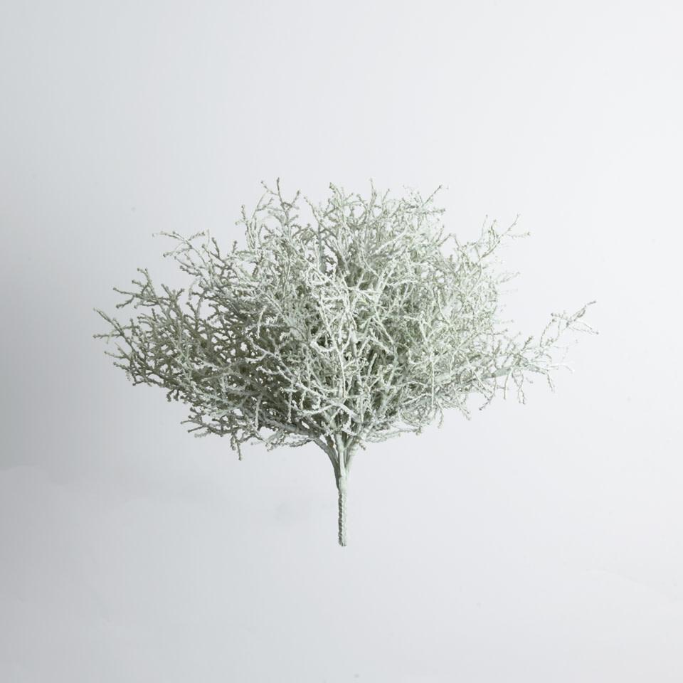 "Spanish Moss Bush-10"""
