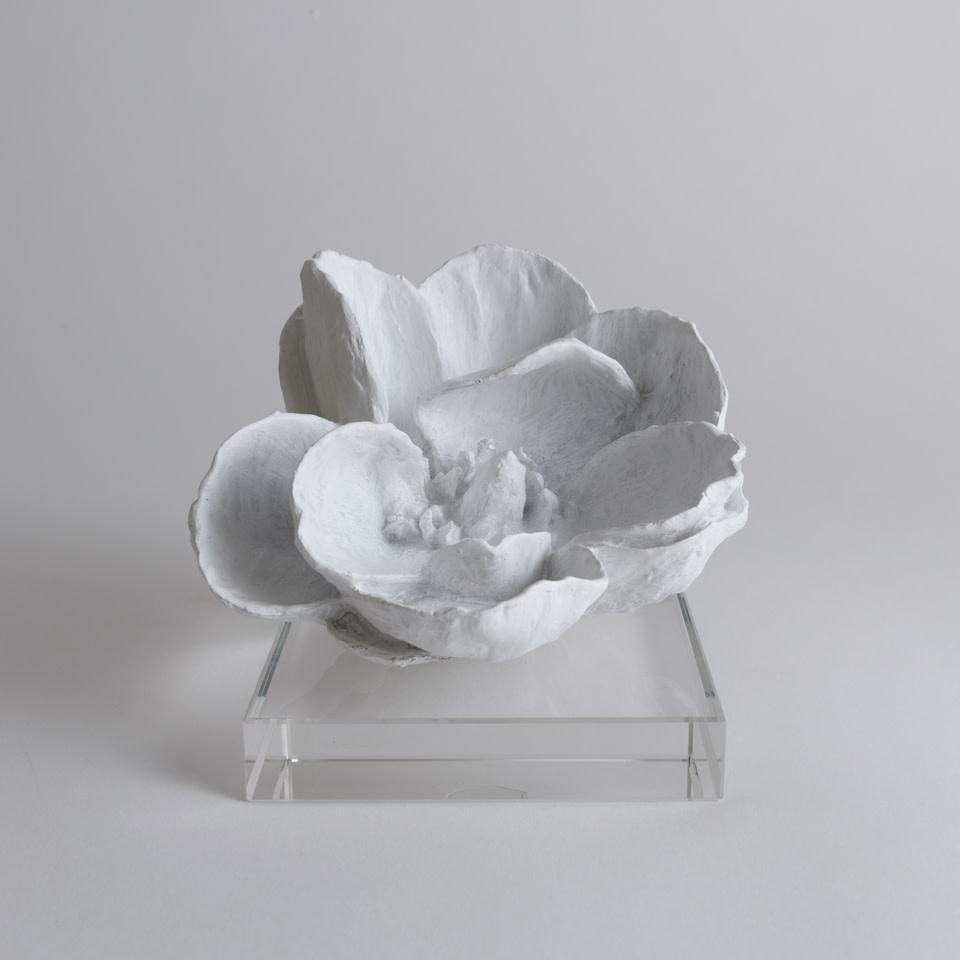 Magnolia Object