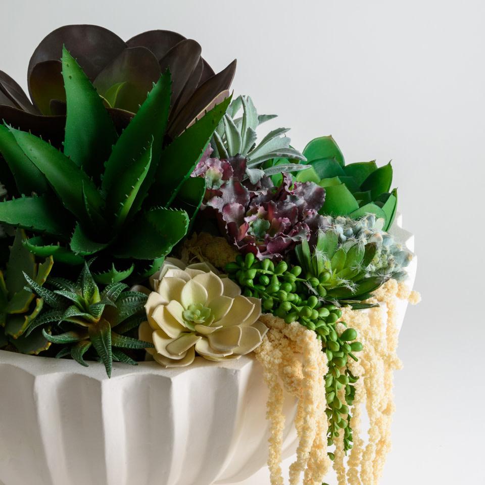 Evia Succulent Bowl