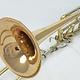 Bach Used Bach 50BLGH Bass Trombone