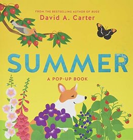 Summer: A Pop-up Book