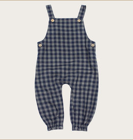 charming mary Midnight Sage Gingham Overalls