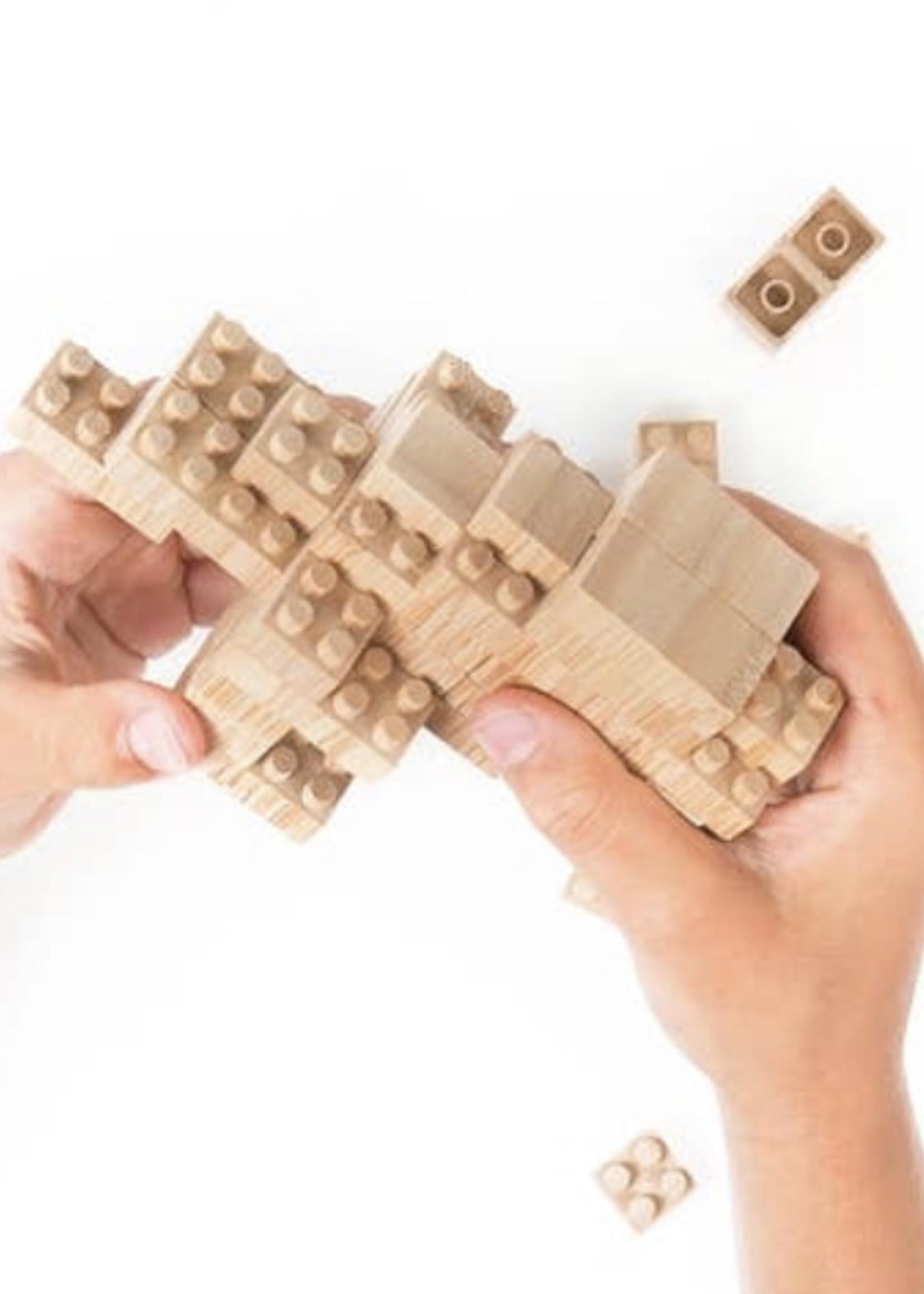 The Lazy Dog & Co Eco-bricks 45 Piece