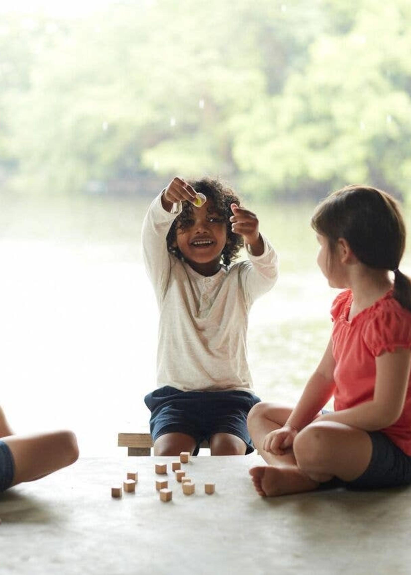 plan toys Memory Game