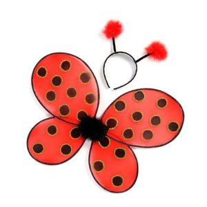 Creative Education Ladybug Wings & Headband