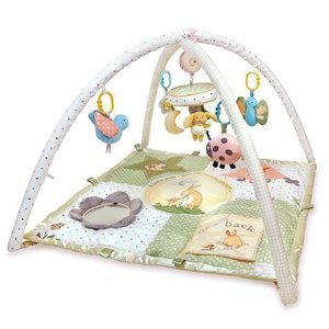 Kids Preferred Guess How Much I love You - Activity Play Gym