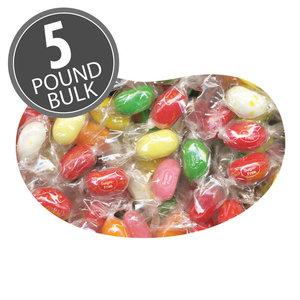 Redstone Foods Jelly Belly Sugar Free 10 Flavor Twist