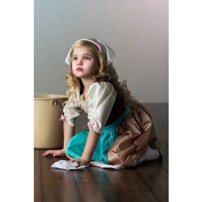 Little Adventures Cinderella Day Dress with Scarf Costume -