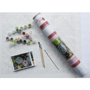 Pink Picasso Kits Pink Picasso - Sensitive Succulents - Paint By Numbers on Canvas