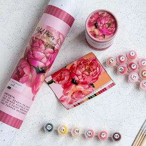 Pink Picasso Kits Pink Picasso - Petal Power - Paint By Numbers on Canvas