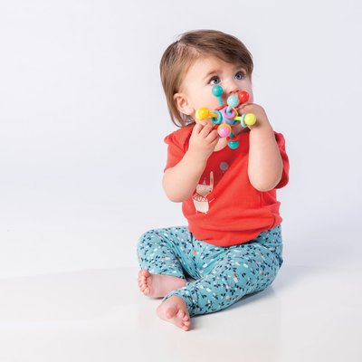 Manhattan Toy Atom Teether Toy (Boxed)