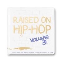 Little Homie Raised On Hip-Hop Book Vol. 3