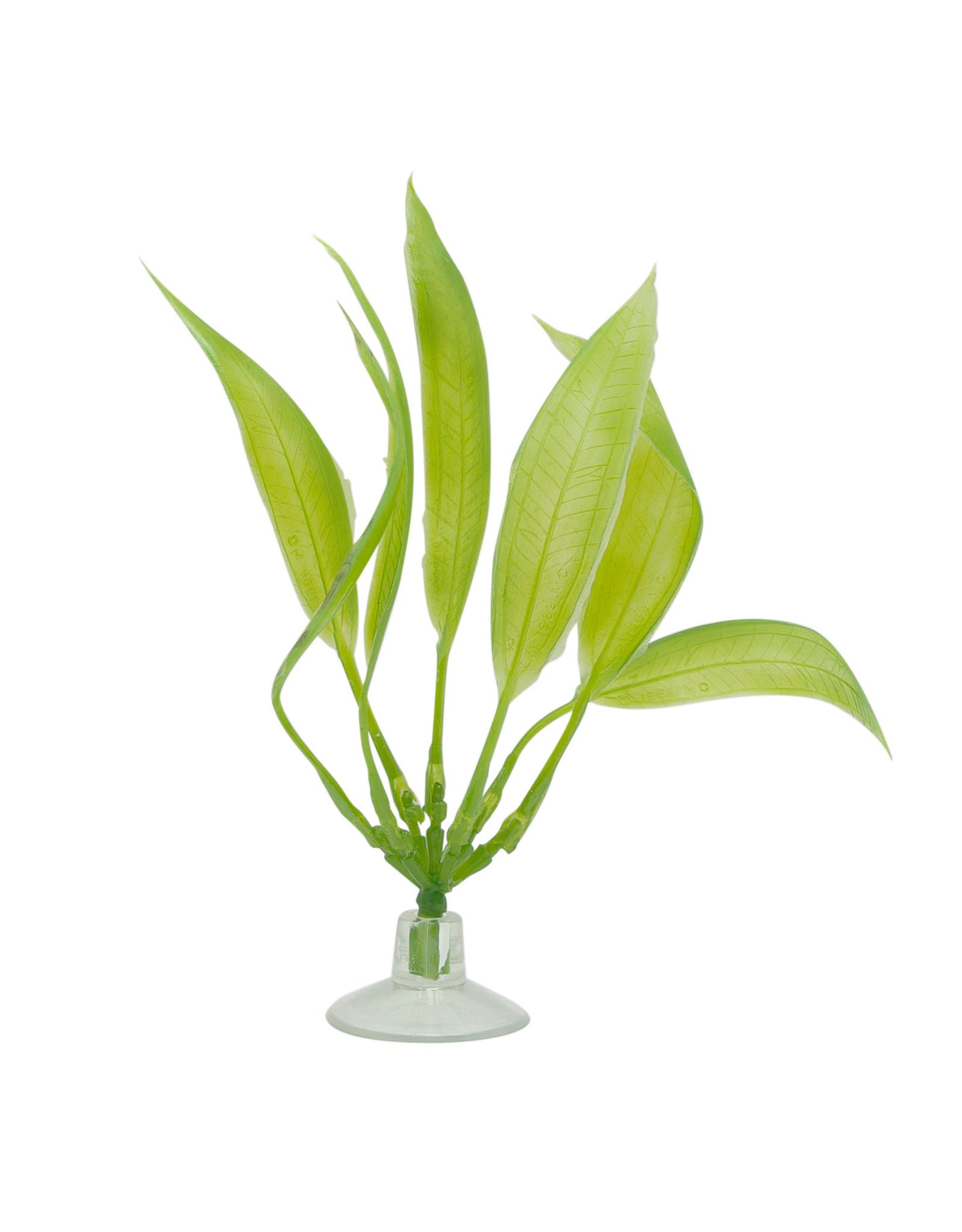 "Marina Marina Betta Amazon Sword Plant With Suction Cup - 12.7 cm (5"")"