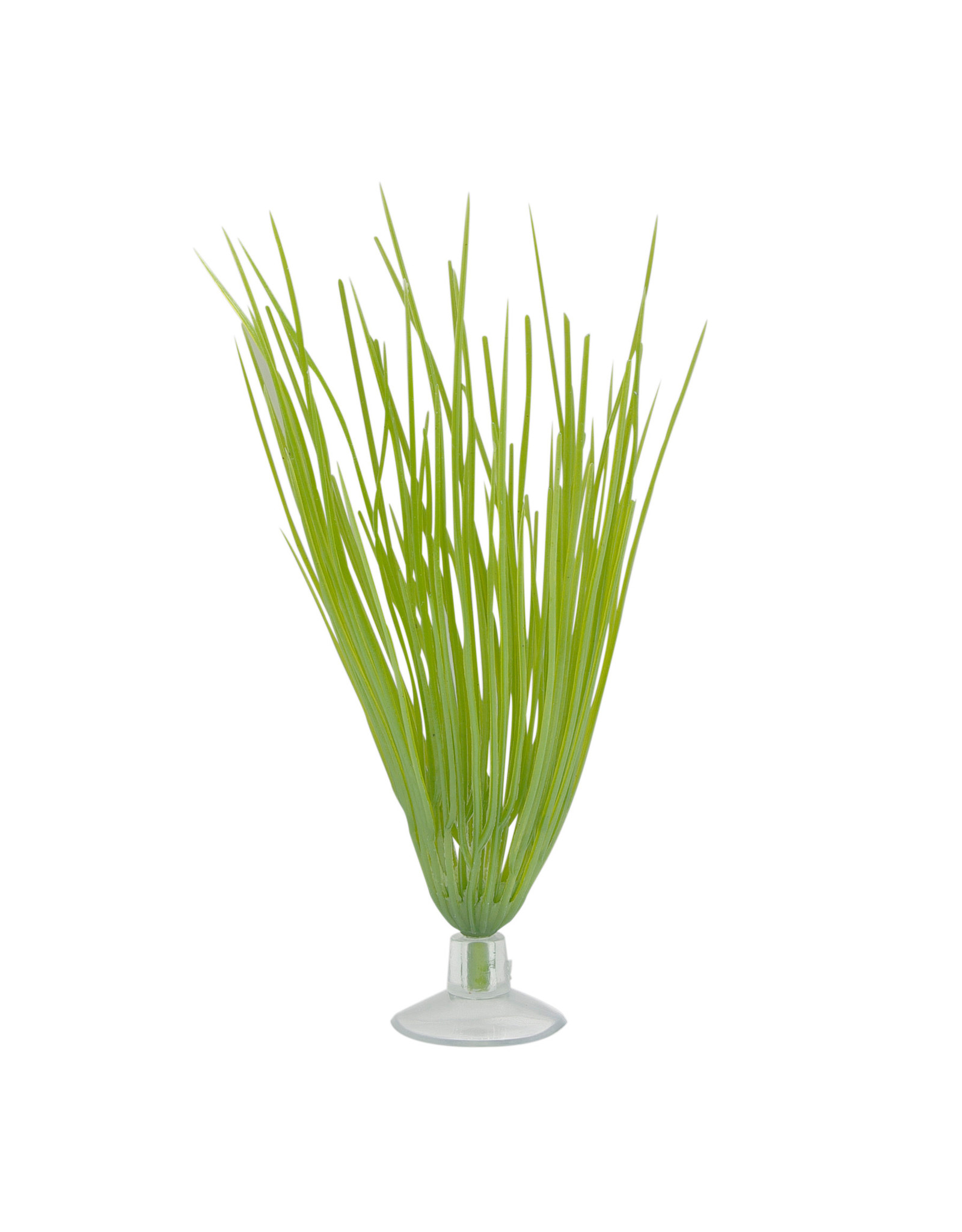 "Marina Marina Betta Hairgrass Plant With Suction Cup - 12.7 cm (5"")"