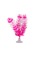 "Marina Marina Betta Foxtail Plant with Suction Cup - 12.7 cm (5"")"