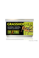 Exo Terra Canned Grasshoppers 34g