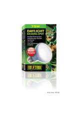 Exo Terra Daylight Basking Spot Lamp R20/75W