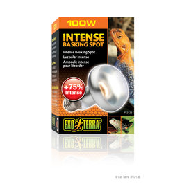 Exo Terra Intense Basking Spot S25/100W