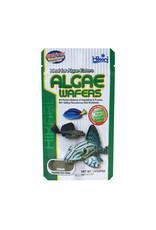 Hikari Algae Wafers - 1.41 oz